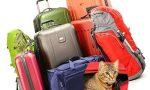 какие сумки брать в отпуск